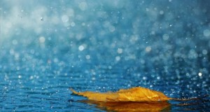 قطرات اشک، قطرات باران را در پی دارند