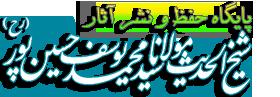 پایگاه رسمی حفظ و نشر آثار شیخ الحدیث مولانا محمّد یوسف حسین پور (رح)